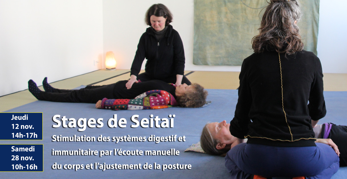 Les stages de Seitaï à Tours